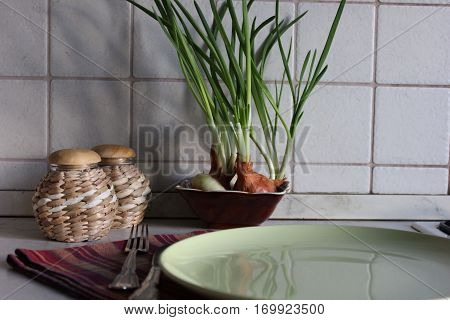 Onion green sprouts growing in kitchen with food containers and cutlery on tea towels. Kitchen corner with plate, fork and knife on towel, food decorative containers and growing green onions.