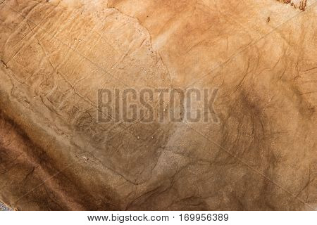 Old paper texture with aged blots. Background