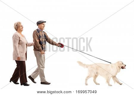 Full length portrait of an elderly couple walking a dog isolated on white background