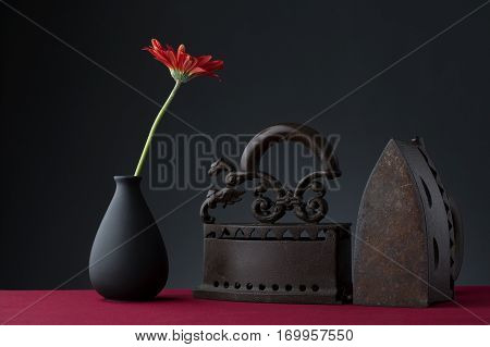 Red gerbera flowers and old iron with black background