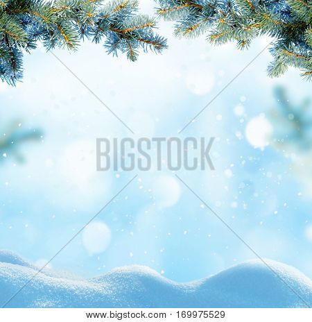 Christmas background with fir tree branch.Winter landscape.