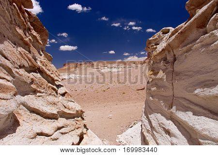 View of Salar de Tara, Atacama, Chile
