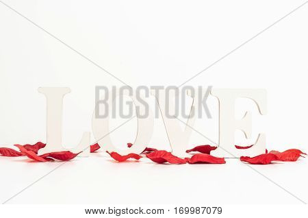 rose petals love background text romance isolated white flower romantic red valentine heart celebration wedding decoration holiday floral card petal falling design nature pattern natural concept san valentin white