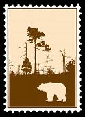 silhouette bear in wood on postage stamps poster