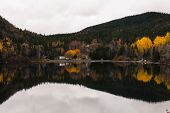 Autumn foliage in boreal forest on a calm day with orange and yellow trees reflected in a pond in Newfoundland and Labrador, Canada. poster