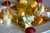 Delicious cheese plate with blue roquefort brie camambert gauda with garnishes grapes oranges and nuts on white porcelain background poster