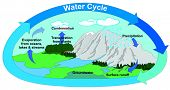 Vector Water Cycle in Nature with all part precipitation surface runoff groundwater evaporation transpiration condensation clouds mountains rivers lake trees forest  lawns arrows circulation poster