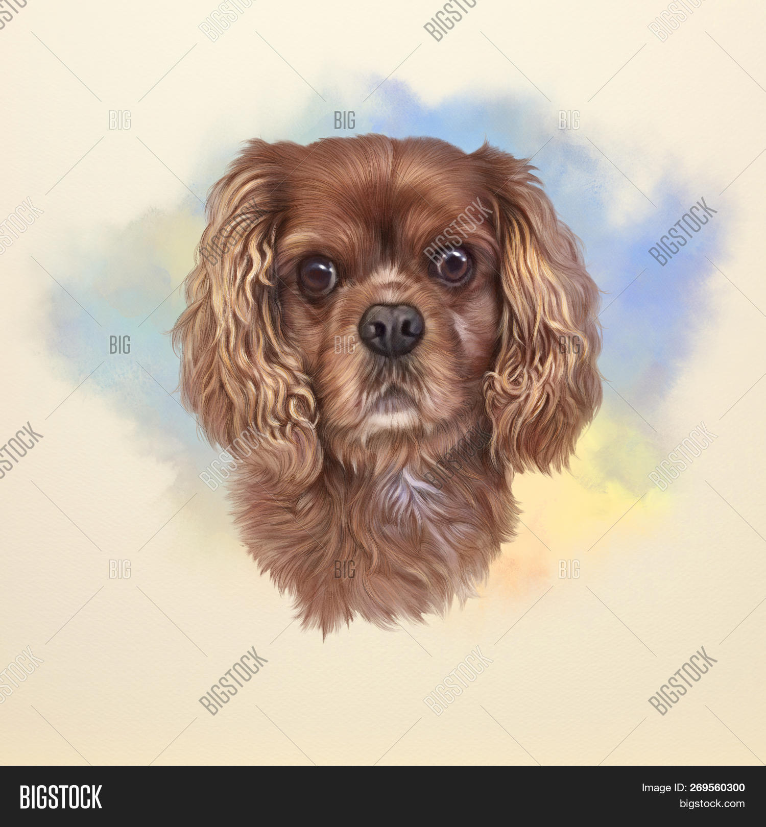 e0f4be8423a6 Cocker Spaniel Dog. Image & Photo (Free Trial) | Bigstock