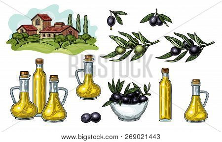 Olives On A Branch With Leaves. Glass Jugs And A Bottle Of Olive Oil. Rural Landscape With Villa Or