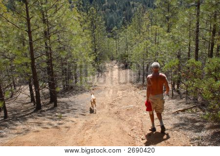 A man hikes in the mountains with his hound dog poster