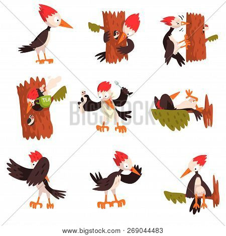 Cute Funny Woodpecker Bird Cartoon Character In Different Situations Set Vector Illustration On A Wh