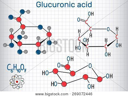 Glucuronic acid molecule, plays an important role in the metabolism of microorganisms, plants and animals. Structural chemical formula and molecule model. Sheet of paper in a cage.Vector illustration poster