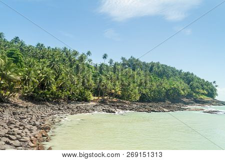 Coast of Ile Royale, one of the islands of Iles du Salut Islands of Salvation in French Guiana poster