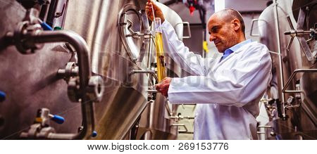 Low angle view of manufacturer examining beer at brewery