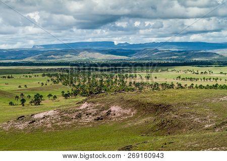 Landscape Of Gran Sabana Region In National Park Canaima, Venezuela. Tepuis Table Mountains In The B