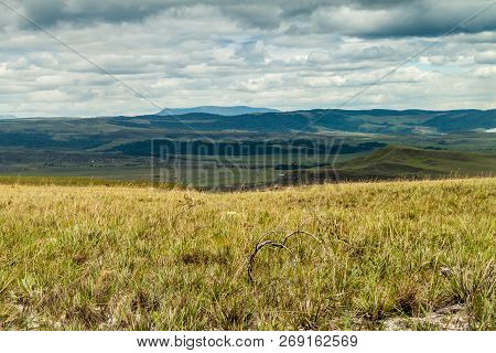 Landscape Of Gran Sabana Region In National Park Canaima, Venezuela.