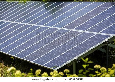 Close-up surface of lit by sun modern saving efficient stand -alone blue shiny solar photo voltaic panels system producing renewable clean energy on green grass and trees foliage background. poster