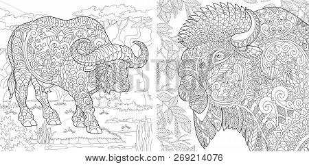 Coloring Pages. Coloring Book For Adults. Colouring Pictures With Buffalo And Bison. Antistress Free