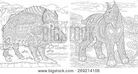 Coloring Pages. Coloring Book For Adults. Colouring Pictures With Wildcat And Wild Boar. Antistress