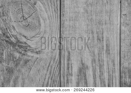 Vintage White Wooden Texture Of Planks With Knot - Natural Pattern Of Coniferous Timber. Grunge Wood