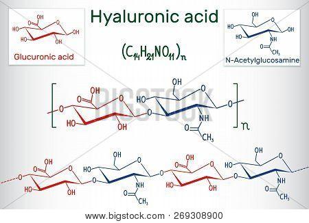 Hyaluronic Acid (ha, Hyaluronate, Hyaluronan ) Macromolecule. Hyaluronic Acid (ha) Is A Viscoelastic