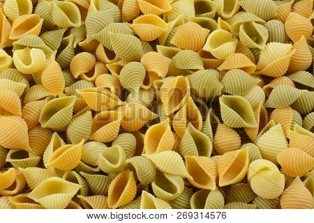 Raw And Dry Tricolor Spinach Tomato And Wheat Conchiglioni Vegetable Shell Pasta