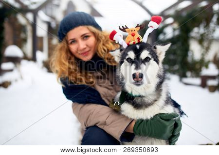 Attractive Authentic Caucasian Woman Hugs Funny Malamute Dog Wearing Santa Dear Christmas Antlers. C