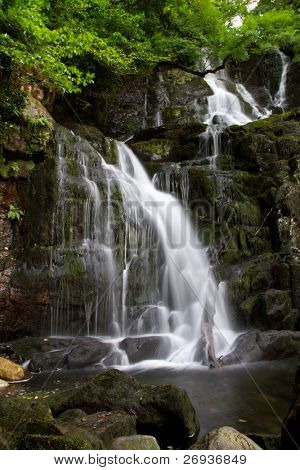 Torc waterfall in Ireland poster