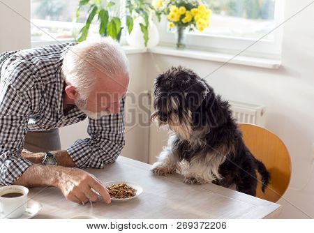 Senior Man Giving Plait With Dry Food To A Dog On Dining Table