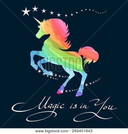 Rainbow Unicorn. Awesome Pretty Unicorn Pony Rainbow Background Outline Vector Illustration