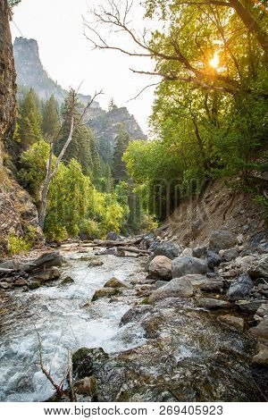 Beautiful Rugged Mountain River landscape scene. The sun is shinning through the trees on a beautiful summer day. Natural scenic stream flowing through the canyon in the Rocky Mountains