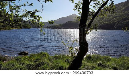 Llyn Gwynant Lake Lies On The River Glaslyn, In The Nant Gwynant Valley, And Is About Two Km North E
