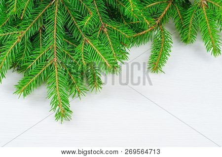 Abstract Background With The Christmas Tree Twigs
