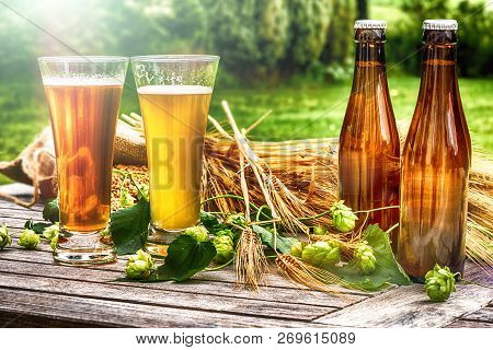 Glasses With Fresh Cold Beer In Rustic Setting. Food And Drink Background