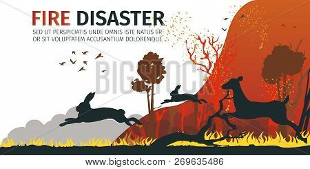 Illustration Cartoon Animal Escaping From Danger. Vector Image Group Deer And Hare Flees From Danger