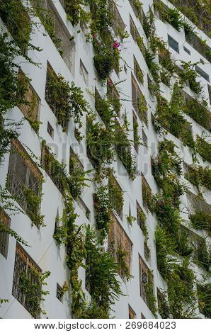 Green Building Architecture Background. Building With Green Plants In Windows. Sustainable, Green Ar