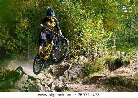 Professional DH Cyclist Riding the Mountain Bike on the Autumn Forest Trail. Extreme Sport and Enduro Cycling Concept.