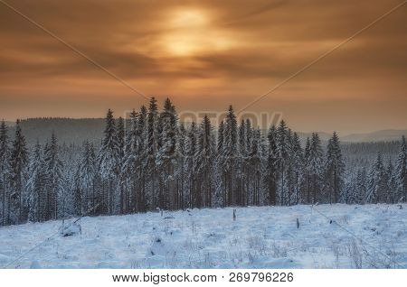 Winter In Harz National Park Near Braunlage And Brocken Mountain,germany,