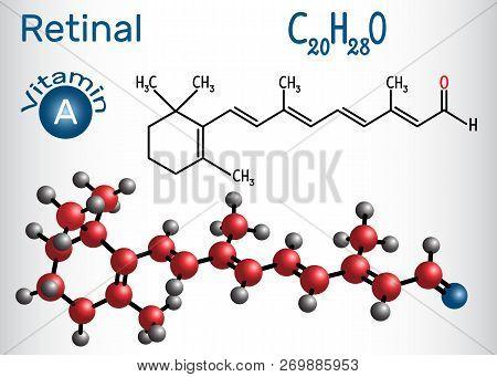 Retinal (retinaldehyde) Is Vitamin A. Structural Chemical Formula And Molecule Model. Vector Illustr