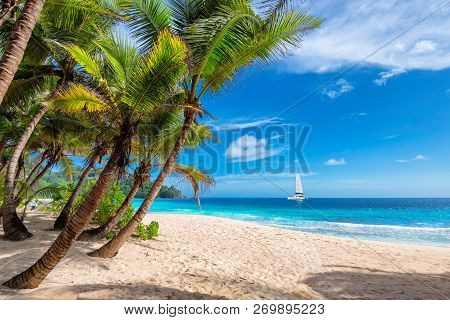 Tropical Sandy Beach With Palm And A Sailing Boat In The Turquoise Sea On Paradise Island.