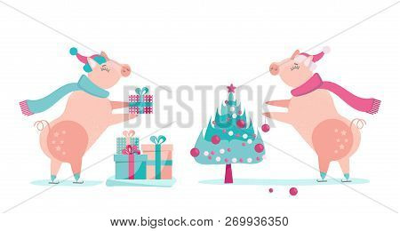 Set Of Two Pigs - Christmas Piggy In Santa Claus Hat And Sharf Decorates Christmas Tree With Balls.