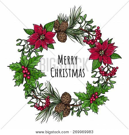 Christmas Wreath. Holly Branch With Berries, Spruce Branch With Cones, Branch Of Mistletoe With Berr