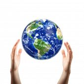 hands catching earth poster