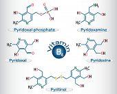 Vitamin B6 ( pyridoxal phosphate, pyridoxamine, pyridoxal , pyritinol, pyridoxine). Structural chemical formula and molecule model. Vector illustration poster