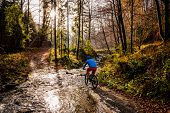 Mountain biker cycling in autumn mountains forest landscape. Man cycling MTB enduro flow trail track. Outdoor sport activity. poster