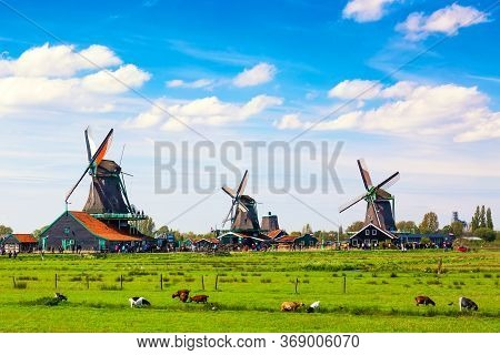 Typical Iconic Landscape In The Netherlands, Europe. Traditional Windmills In Zaanse Schans Village.
