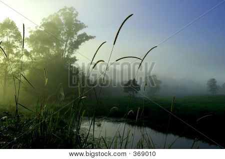 Misty Morning Over The River