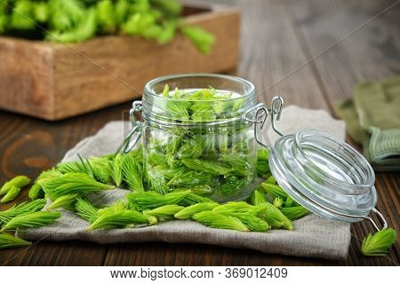 Jar Of Spruce Tips For Cooking Syrup Or Honey From Fir Buds And Needles, Twigs Of Fir Tree On Wooden