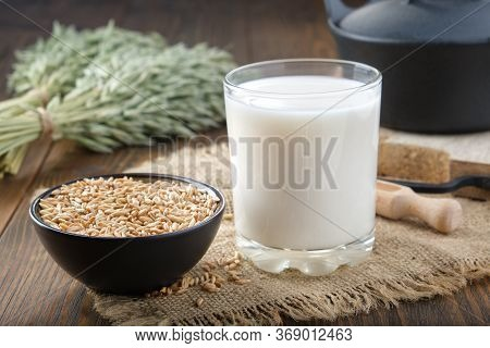 Glass Of Oats Milk, Ingredients For Making Oats Milk Or Oatmeal Beverage At Home. Green Oat Ears And