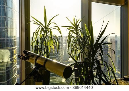 Panoramic View Through The Office Window Of Skyscraper In Business Center With Two Big Green Housepl